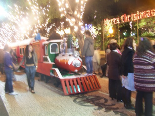 Fun train in Funchal City