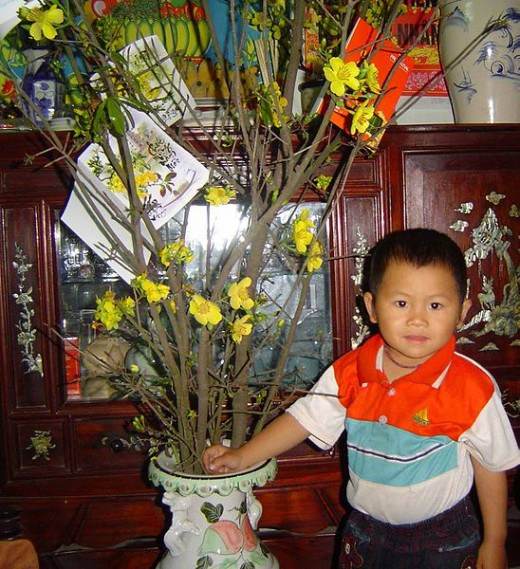 Vietnamese Lunar New Year Tree
