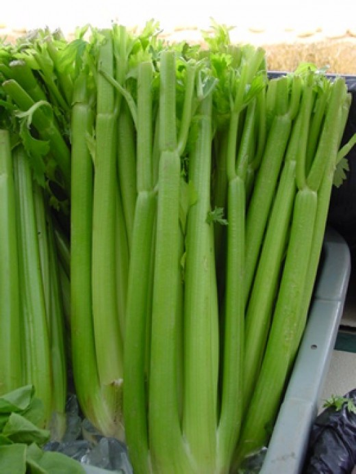 Celery is cheap, easily available and full of essential vitamins and minerals
