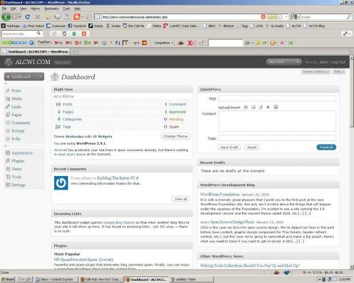A Typical Wordpress 2.9 dashboard