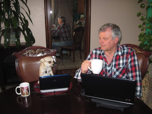 My chihuahua assistant, Chika, and I trying to write and publish 30 Hubs in 30 Days