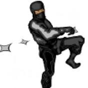 Information Ninja profile image