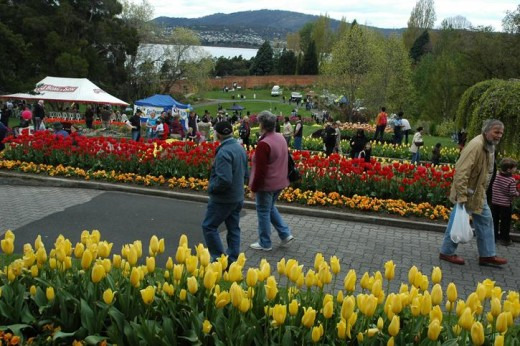 Enjoying the parks and arboretum garden during spring    FUN activities to enjoy during spring