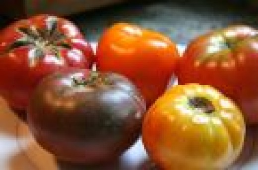 Yummy Heirloom Tomatoes