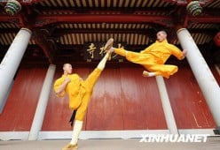 Northern Shaolin Kung Fu! The Killing Art