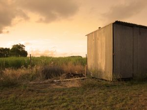 Steel sheds rust, and may need to be replaced. Why not try a plastic shed?