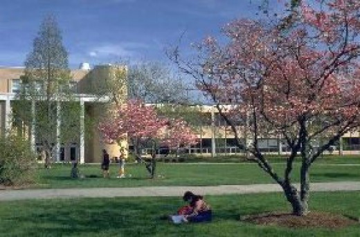 creative writing colleges in north carolina