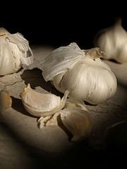 Garlic the key Allium