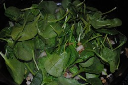 Fresh spinach in - it looks like a lot, but...