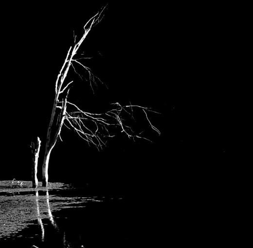 Not Light---Not Dark---the Inbetween