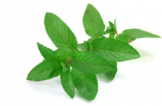 Natural Menthol Cleanser