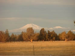 Central Oregon is where I'm able to live where I love. This is my view from my bedroom.