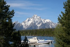Grand tetons backdrop at Jackson lake near Jackson hole Wyoming