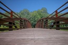 Bridge at Park Along the River