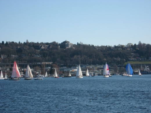 There's also a sailboat event today. Lake Union is crowded, but it's beautiful!