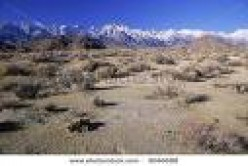Raping paradise: California's water and aqueduct wars in the Owens Valley