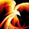 Phoenix Files profile image