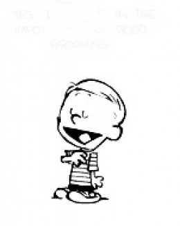 Calvin's well-behaved duplicate: too good to be true!