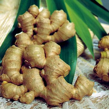 More than zing! Ginger heals vertigo. Courtesy of blog.seattlepi.com/.../Ginger_and_leaves.jpg