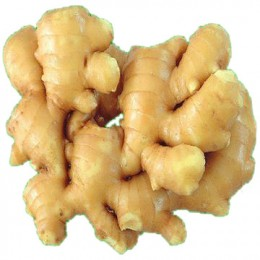 Ginger is one of the worlds most common home remedies for upset stomachs and worms.