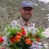 DavidSofia profile image