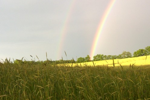 Photo of Double Rainbow
