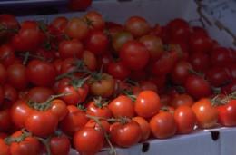 Vegetarians develope great vegetable recipes.