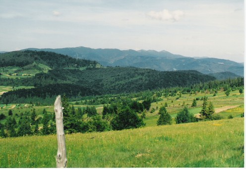 A view of the Ukraninian Beskids from near the village of Klych. The peak in the back right skyline is Parashka (1268 meters).