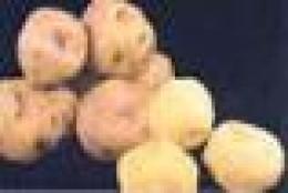 Papa amarilla (yellow potato)