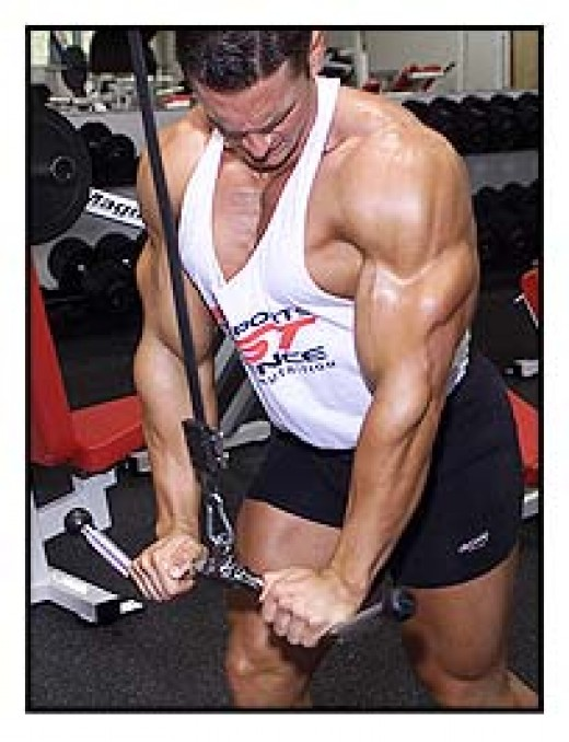 Triceps are one of the most noticeable muscles on a man