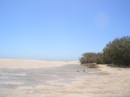 Yardie Creek in Carnavon. There is still some water from the last raining season.