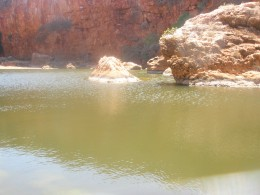 The secret pool of fresh water, so priceless in this unhospitable environment.