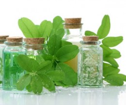Naturopathy utilized natural healing such as herbal remedies