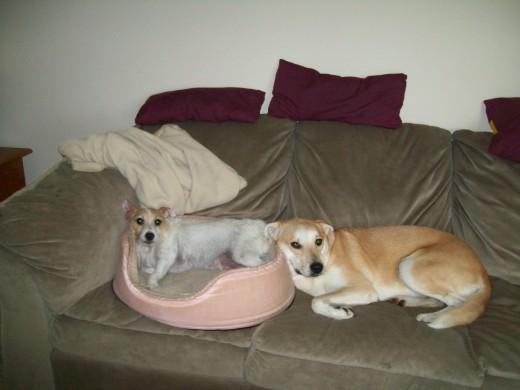 Chloe & Maggie