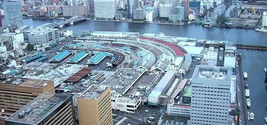 Overhead view of Tsukiji Fish Market