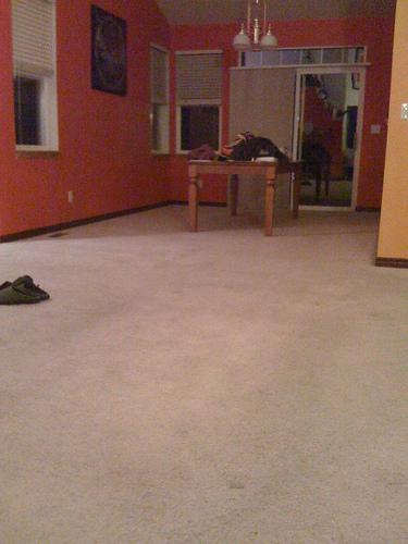A shampooed carpet