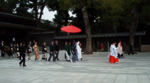 One of several weddings at Meiji shrine