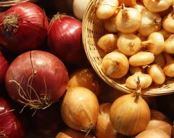Onion - How Healthy are Onions?