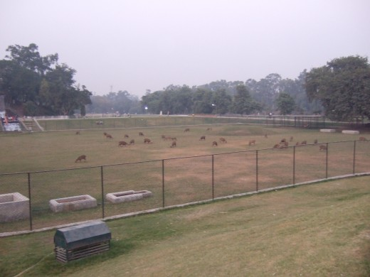 Iqbal Park, Lahore