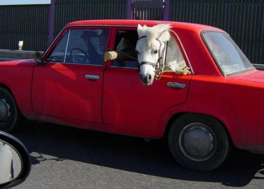 Wv Car Seat Laws >> Strange Real Laws   HubPages
