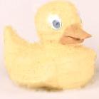 Duckie Is My Friend?