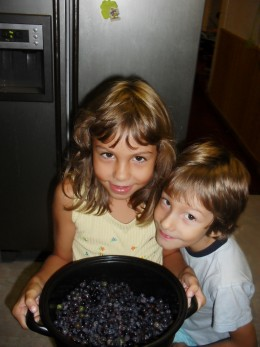 Showing proudly their wild grapes and blackberries