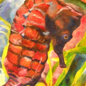 Painted Seahorse profile image