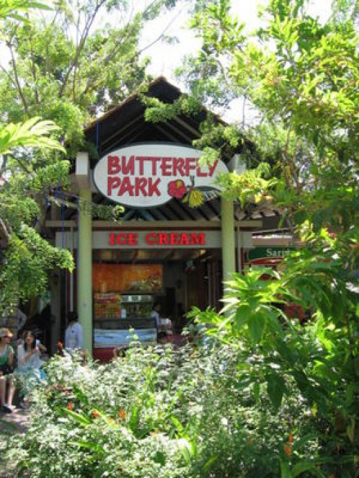 Butterfly Park Credit: Sengkang Copyright: Wikimedia Commons