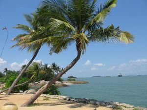 Beach Credit: Sengkang Copyright: Wikimedia Commons
