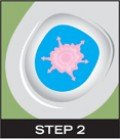 STEP 2: The scientific formula of The Drops interacts with the toilet water and creates a barrier on the surface.
