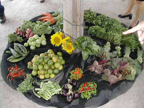 Community organic produce