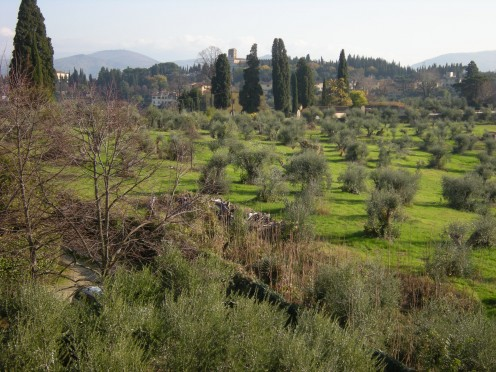 landscapes of Florence around the Gardens