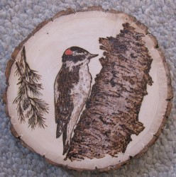 Vera's New Crafts- Woodburnings. Different Types of Wood for Pyrography.