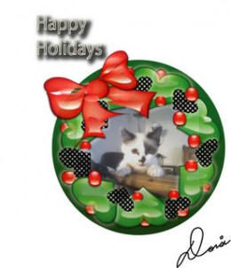 A holiday greeting (with my kitty) that I sent out to my friends one year
